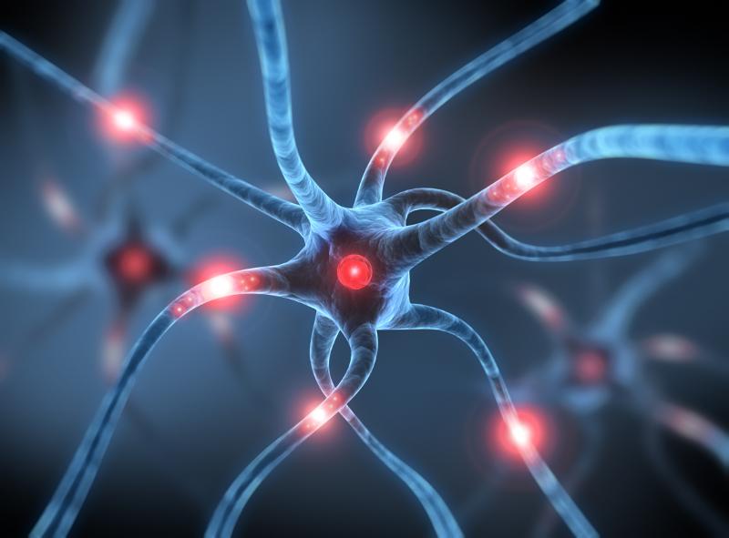 Sinapsis de una Neurona para ilustrar el efecto del Neuromarketing en el Cerebro