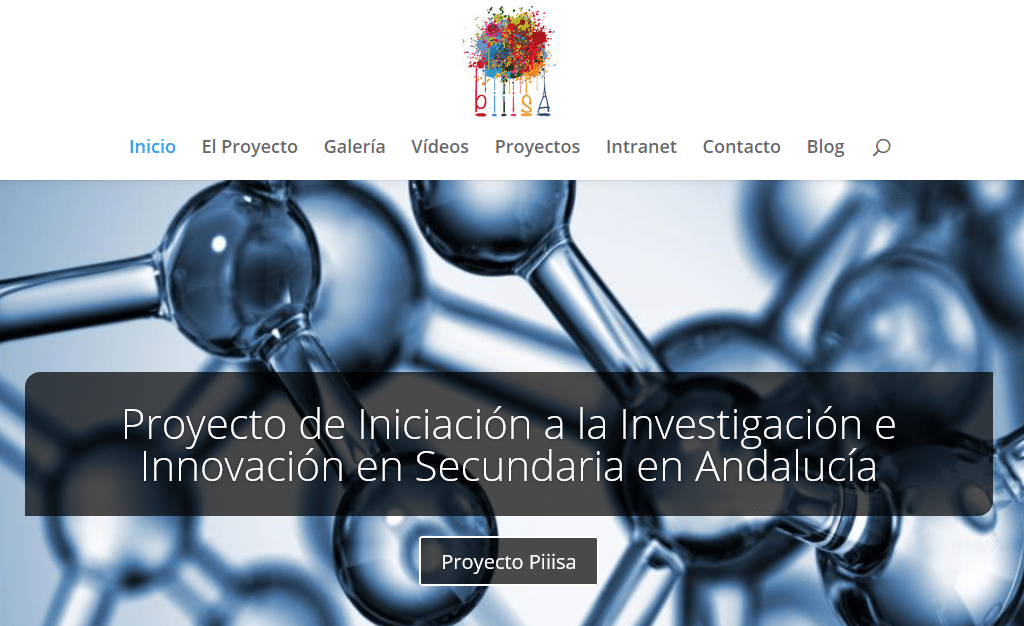 Página Web del proyecto Piiisa